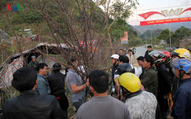 Ảnh: Đào rừng Tây Bắc ngập tràn trên phố núi Lai Châu - Ảnh 19.