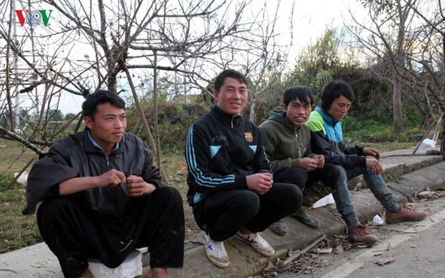 Ảnh: Đào rừng Tây Bắc ngập tràn trên phố núi Lai Châu - Ảnh 3.
