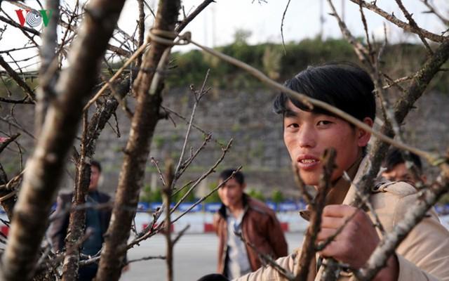 Ảnh: Đào rừng Tây Bắc ngập tràn trên phố núi Lai Châu - Ảnh 5.