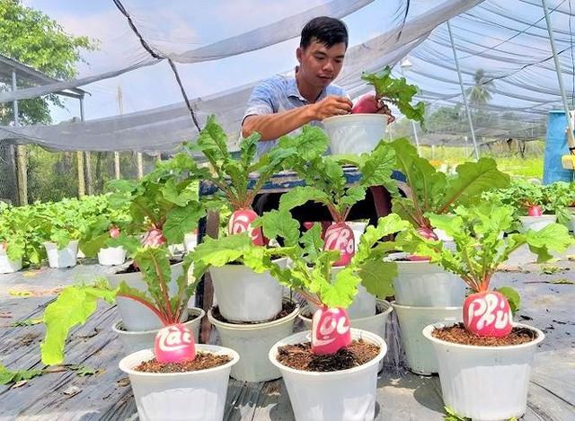 Củ cải hồng phát độc đáo chưng Tết ở Bến Tre - Ảnh 5.