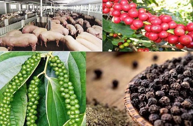 Xuất khẩu rau quả, gạo, thịt heo sang Trung Quốc dự báo gặp khó trong năm 2019 - Ảnh 1.