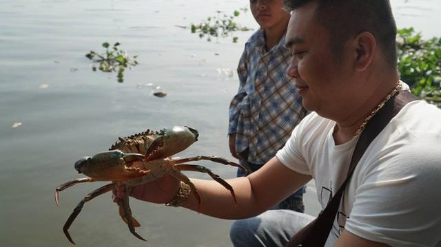 Người Sài Gòn mua cua mang đến chùa phóng sinh ngày ông Công ông Táo - Ảnh 5.