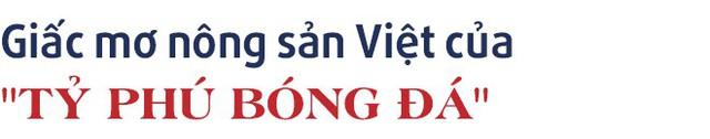 """Chuyện kinh doanh lần đầu kể của """"tỷ phú"""", tiền đạo Anh Đức: Từ kinh doanh đồ thể thao đến giấc mơ thương hiệu nông sản Việt - Ảnh 9."""