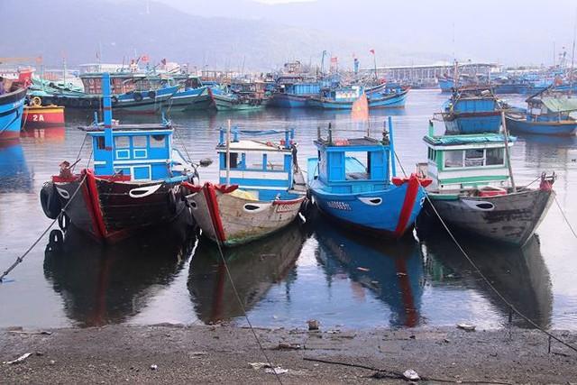 Ngổn ngang nghĩa địa tàu cá xả bản ở Đà Nẵng - Ảnh 13.