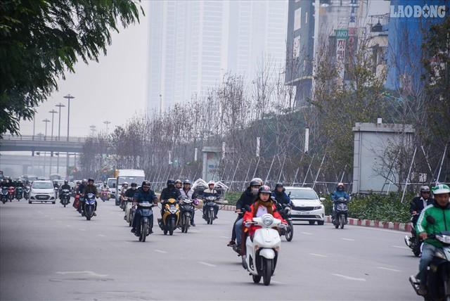 Phong lá đỏ Hà Nội: Chưa kịp đỏ, lá phong đua nhau ngả... đen - Ảnh 5.