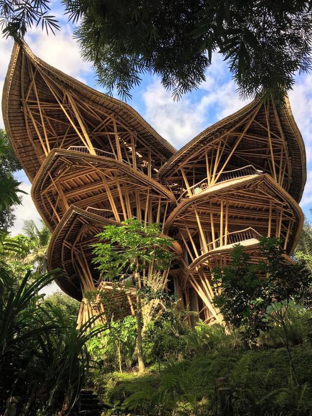 Ngỡ ngàng biệt thự tre 6 tầng tuyệt đẹp giữa rừng - Ảnh 1.