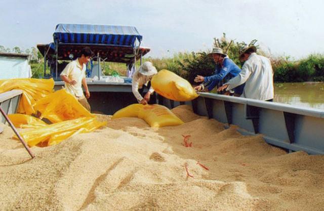 Việt Nam top đầu thế giới nhưng 1 con số khiến 20 triệu người lo âu - Ảnh 1.
