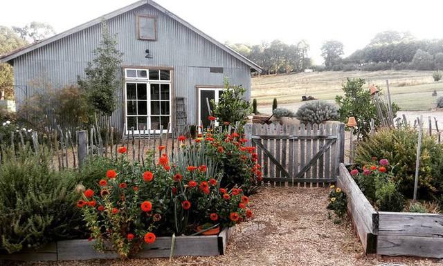 Gia đình 5 người quyết tâm không trở lại thành phố vì quá yêu thích cuộc sống nhà vườn ở nông thôn - Ảnh 2.