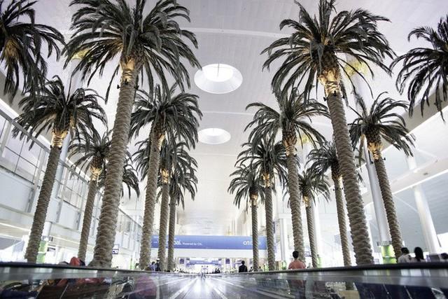 Choáng toàn tập trước 16 sân bay đẹp nhất thế giới, du khách đến chỉ muốn ở lại luôn chứ chẳng thèm đi đâu nữa! - Ảnh 26.