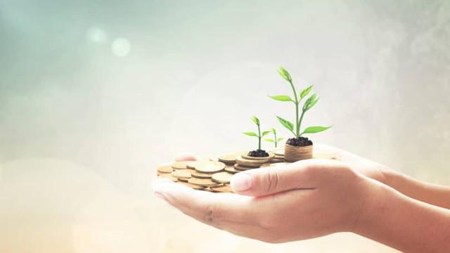 Có 4 chiến lược đầu tư trên thị trường chứng khoán, bạn thuộc loại nào? - Ảnh 1.