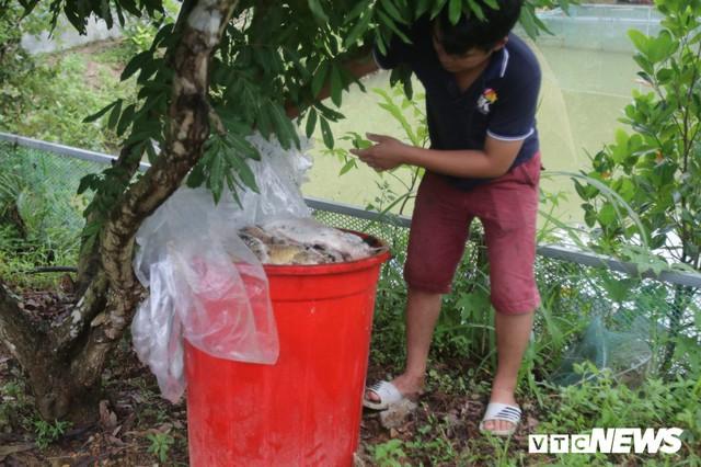 Ảnh: Cận cảnh con suối đen sì gần nhà máy nước sạch sông Đà bị đầu độc bởi dầu thải - Ảnh 4.