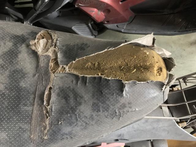 Hàng trăm xe máy nằm vạ nhiều năm ở sân bay Tân Sơn Nhất - Ảnh 5.
