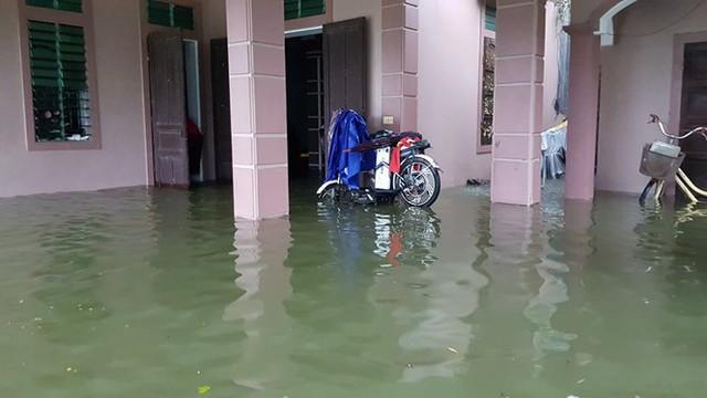 Thành phố Vinh thất thủ sau trận mưa xối xả - Ảnh 11.
