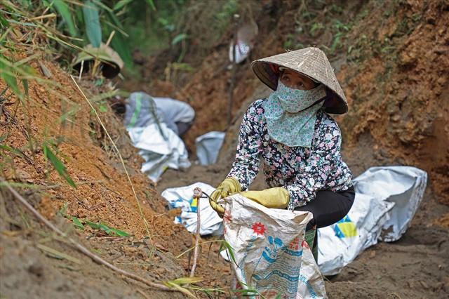 Hoà Bình: Cty nước Sông Đà chôn lấp cát lẫn dầu thải không đúng quy định - Ảnh 2.