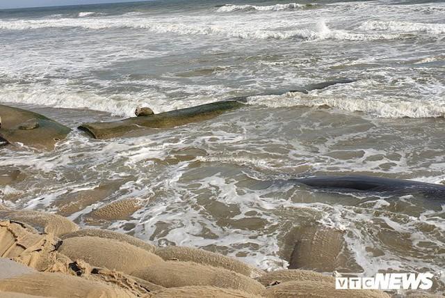 Ảnh: Sóng lớn công phá bờ kè, uy hiếp bãi biển Cửa Đại - Ảnh 8.