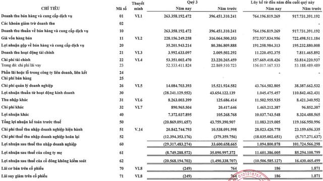 Đạt Phương (DPG) lỗ gần 30 tỷ trong quý 3, mới chỉ hoàn thành 2% kế hoạch năm 2019 - Ảnh 2.