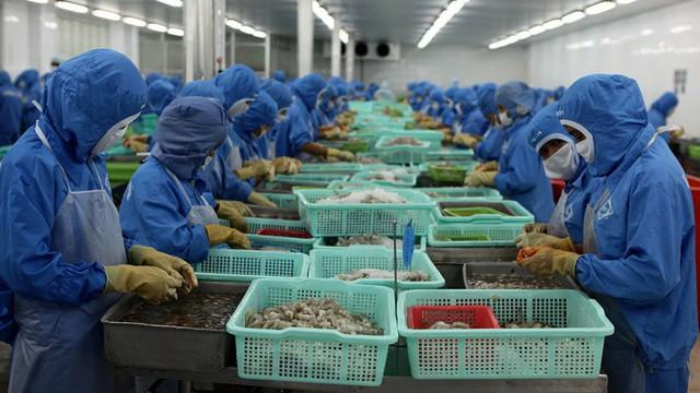 Đứng top đầu thế giới, 10 triệu hộ dân vẫn loanh quanh chợ làng - Ảnh 2.