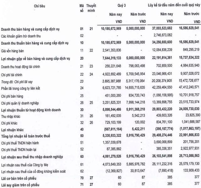 DRH Holdings (DRH): Cổ phiếu về đáy 3 năm, hết 3 quý chỉ mới thực hiện 3% chỉ tiêu doanh thu và 17% chỉ tiêu lãi ròng - Ảnh 1.