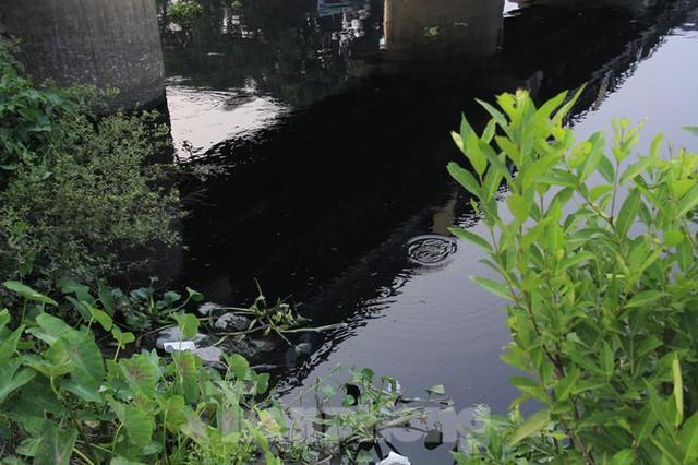 Cả dòng sông đen kịt, bốc mùi hôi thối ở Hải Dương - Ảnh 7.