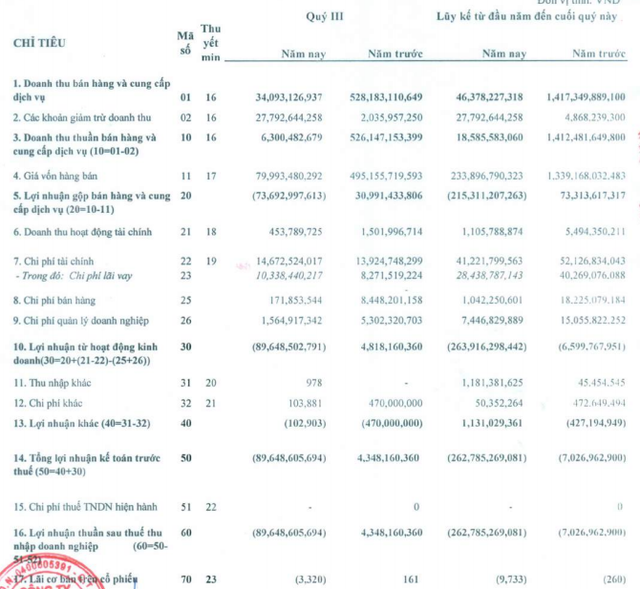 Vẫn tiếp tục dừng sản xuất, Thép Dana - Ý (DNY) lỗ tiếp 90 tỷ đồng trong quý 3 - Ảnh 2.
