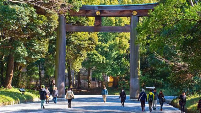 """Triết lý vệ sinh cực đỉnh của người Nhật, lý do đứng sau cảnh quan sạch """"như lau như li"""" đáng ngưỡng mộ tại đất nước Mặt trời mọc - Ảnh 16."""