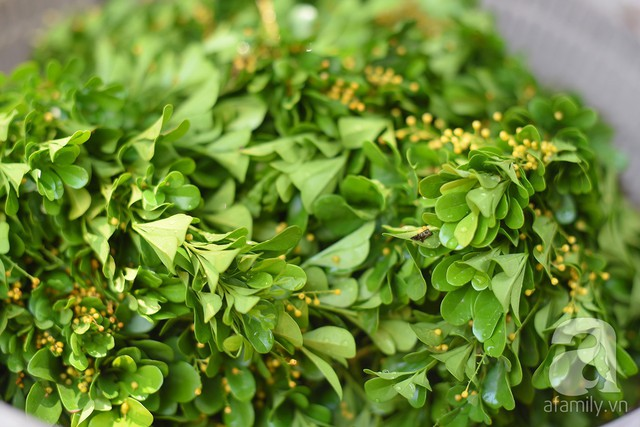 Triết lý sung sướng phụ nữ hiện đại nào cũng phải học từ cụ bà 81 tuổi bán hoa thơm 70 năm ở góc chợ Đồng Xuân - Ảnh 5.