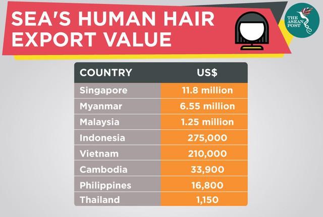 Ngành thu mua, sản xuất và phân phối tóc đang có xu hướng bùng nổ ở Đông Nam Á - Ảnh 1.