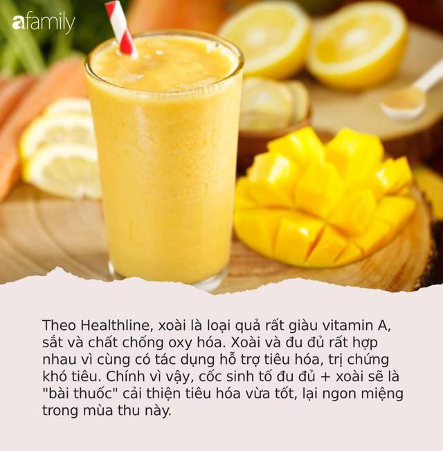 6 cốc sinh tố mát lành, ngọt lịm để bồi bổ sức khỏe trong mùa thu, chống lại mọi bệnh tật - Ảnh 3.