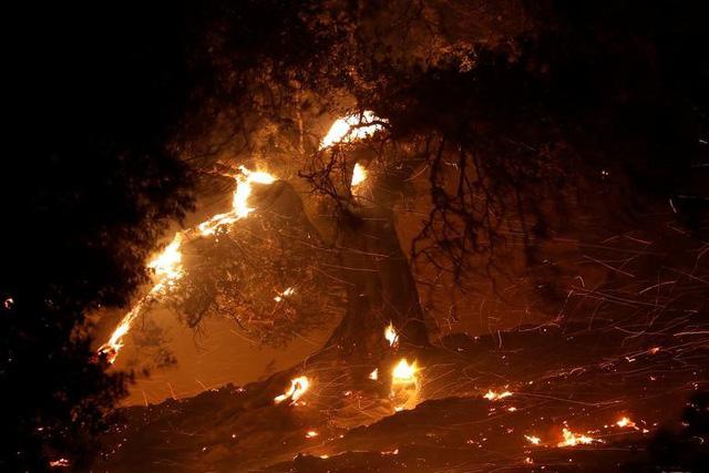 Hàng trăm căn nhà ở California bị thiêu rụi do cháy rừng - Ảnh 1.