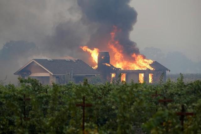 Hàng trăm căn nhà ở California bị thiêu rụi do cháy rừng - Ảnh 3.