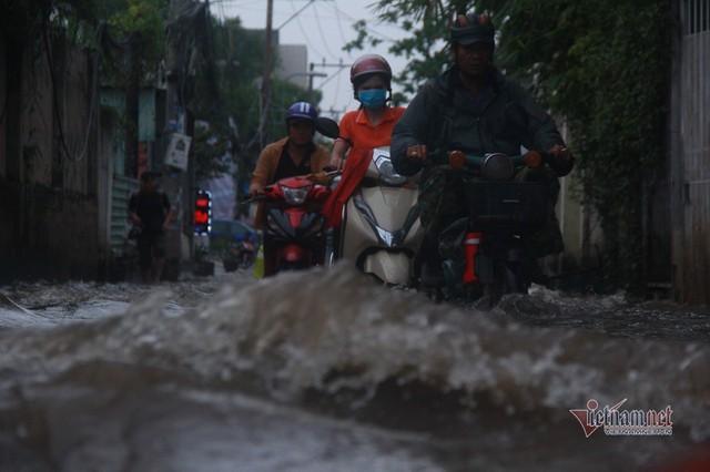 Triều cường ngấp nghé đỉnh, khu nhà giàu Sài Gòn dập dềnh sông nước - Ảnh 3.
