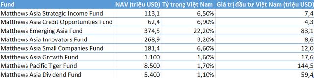 Quỹ chuyên đầu tư vào thị trường Châu Á với quy mô gần 30 tỷ USD đẩy mạnh giải ngân cổ phiếu Việt Nam - Ảnh 5.