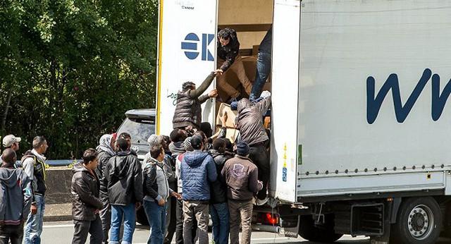 Cảnh sát Bỉ phát hiện 12 di dân còn sống trong thùng đông lạnh - Ảnh 1.