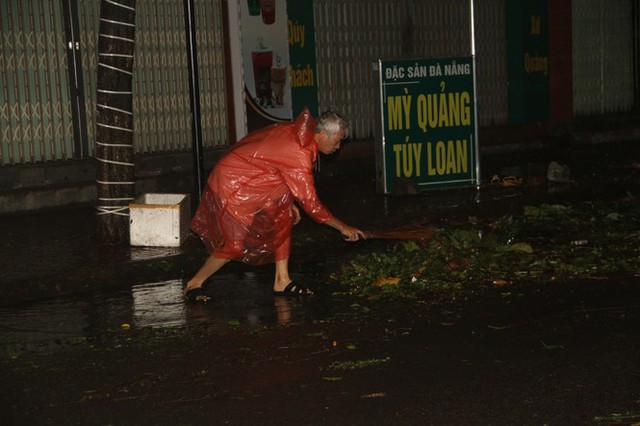 Sau bão số 5, cây cối đổ ngổn ngang, bãi biển Quy Nhơn ngập ngụa rác - Ảnh 1.