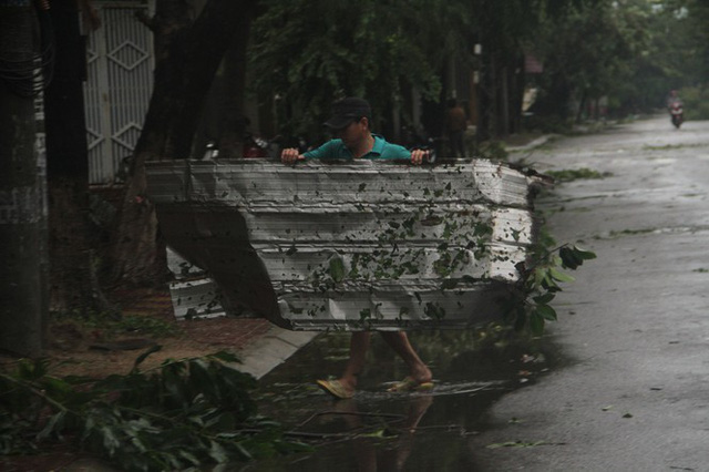 Sau bão số 5, cây cối đổ ngổn ngang, bãi biển Quy Nhơn ngập ngụa rác - Ảnh 2.