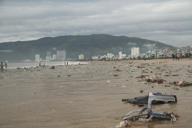 Sau bão số 5, cây cối đổ ngổn ngang, bãi biển Quy Nhơn ngập ngụa rác - Ảnh 11.