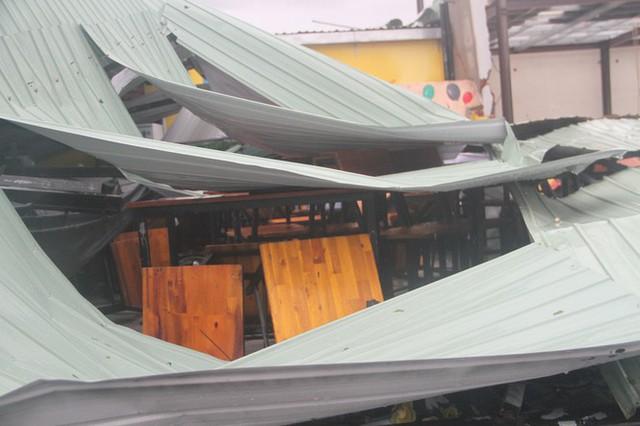Sau bão số 5, cây cối đổ ngổn ngang, bãi biển Quy Nhơn ngập ngụa rác - Ảnh 8.