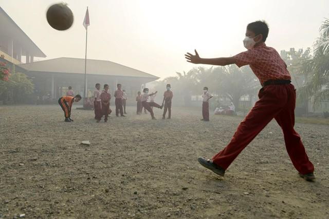 Khủng hoảng khói mù tại Đông Nam Á: Đâu là nguyên nhân và giải pháp - Ảnh 1.