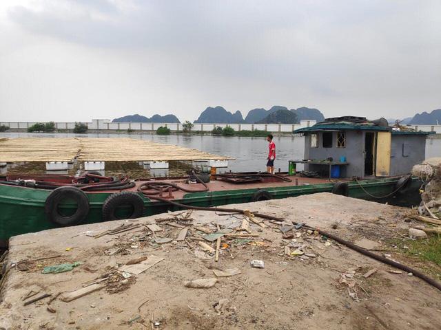 Tái diễn tình trạng tiêu thụ than, xăng dầu trái phép ở Cẩm Phả - Ảnh 1.