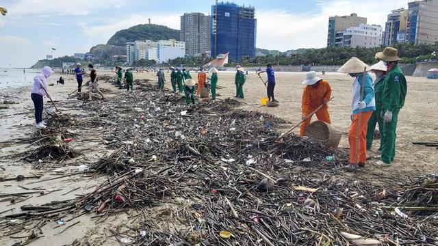 Cận cảnh bãi biển Vũng Tàu bị cả trăm tấn rác vây kín!  - Ảnh 3.