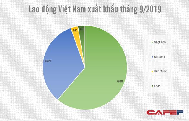 Nhật Bản, Đài Loan là điểm đến hàng đầu của lao động xuất khẩu Việt Nam - Ảnh 1.