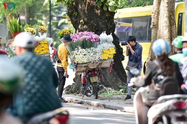 Cúc hoạ mi hút khách đến vườn hoa Nhật Tân  - Ảnh 9.