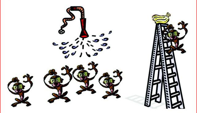 Triết lý 5 con khỉ và bài học về sự nỗ lực không ngừng chốn công sở, sếp kể xong nhân viên vỗ tay rầm rầm vì quá đúng! - Ảnh 2.