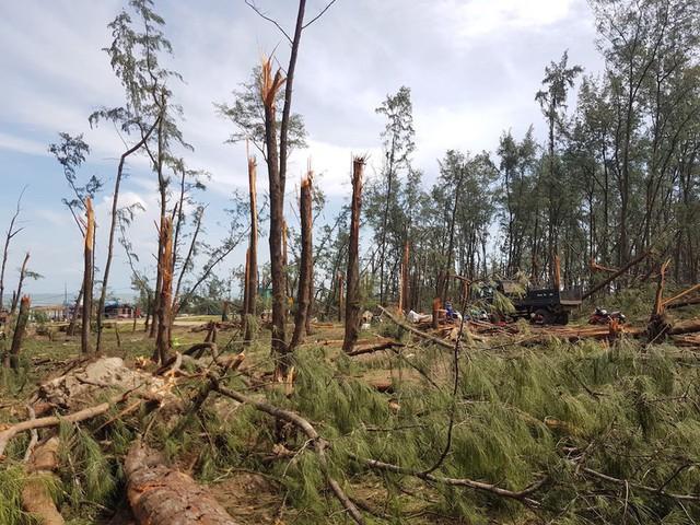 Quảng Ngãi thiệt hại 367 tỉ đồng do bão số 5 - Ảnh 2.