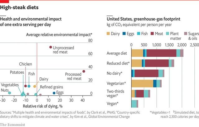 Liệu không ăn thịt nữa có giúp bảo vệ môi trường?  - Ảnh 1.