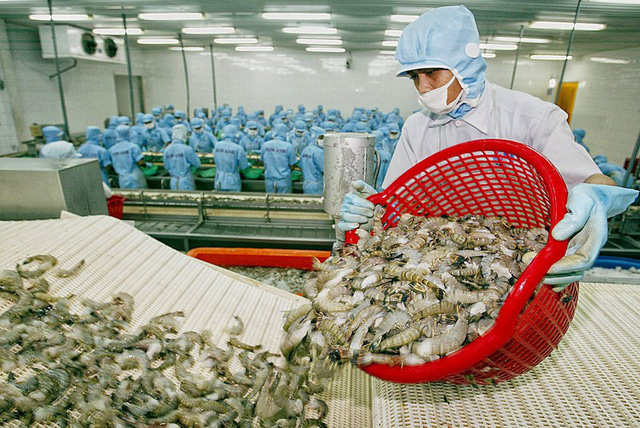 Sốc: Hàng Việt đối diện với 154 vụ kiện từ nhiều nước  - Ảnh 1.