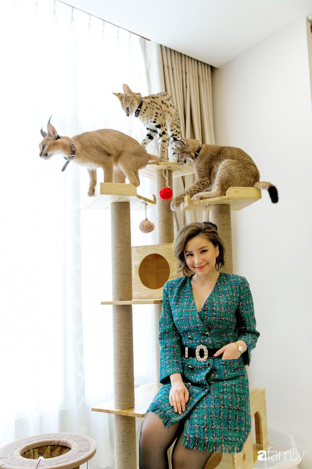 Trang Hà - Cô gái mang những chú mèo trị giá hàng tỷ đồng về Việt Nam và tiết lộ trào lưu nuôi thú cưng mới của giới đại gia và siêu giàu tại Sài Gòn - Ảnh 15.