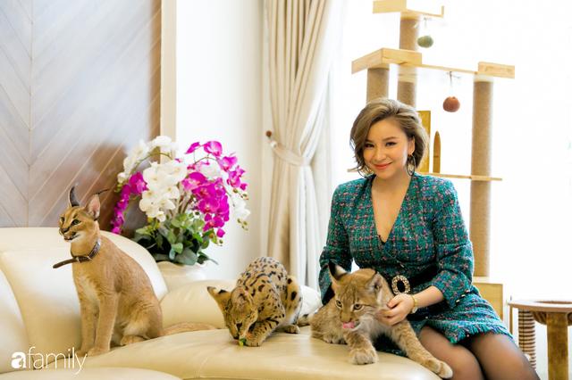 Trang Hà - Cô gái mang những chú mèo trị giá hàng tỷ đồng về Việt Nam và tiết lộ trào lưu nuôi thú cưng mới của giới đại gia và siêu giàu tại Sài Gòn - Ảnh 25.