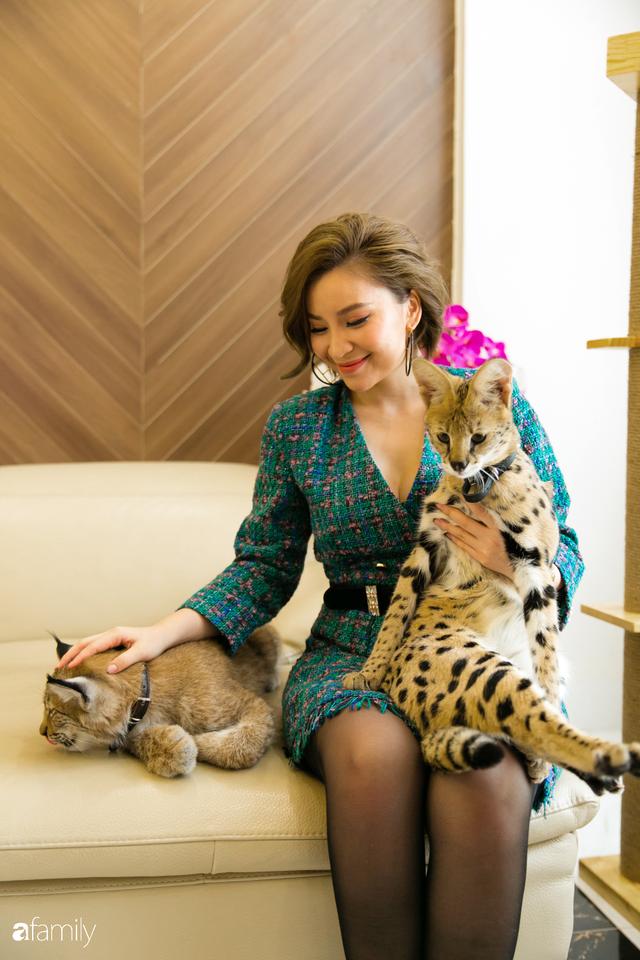 Trang Hà - Cô gái mang những chú mèo trị giá hàng tỷ đồng về Việt Nam và tiết lộ trào lưu nuôi thú cưng mới của giới đại gia và siêu giàu tại Sài Gòn - Ảnh 26.