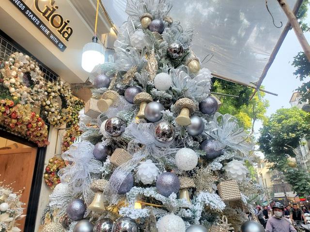 Phù phép bạch thông hàng Tàu chơi Noel, hét giá 20 triệu đồng vẫn gây sốt - Ảnh 1.